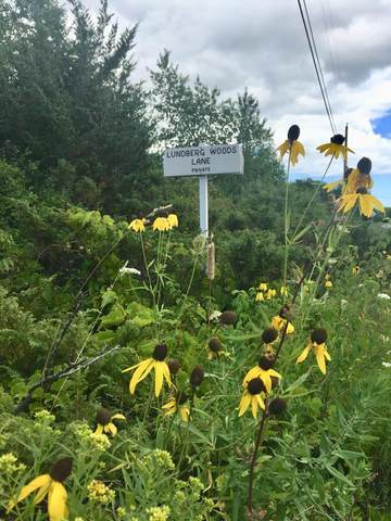 Lot 1 Lundberg Woods, Fish Creek, WI 54212 (#134344) :: Town & Country Real Estate