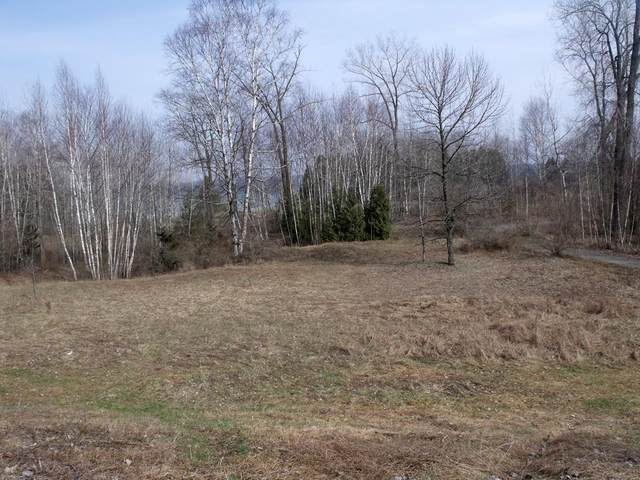 Lot 1 Bluff View Ct, Algoma, WI 54201 (#134850) :: Town & Country Real Estate