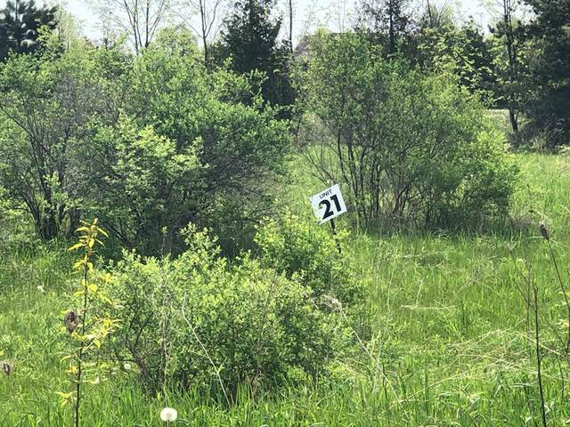 Lot #21 Brooks Ln, Egg Harbor, WI 54209 (#134870) :: Town & Country Real Estate