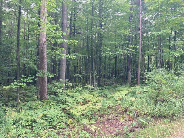 Lot 16 Canal Ln, Sturgeon Bay, WI 54235 (#135797) :: Town & Country Real Estate