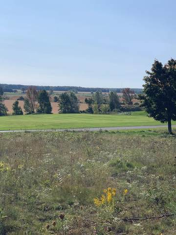 lot 42 Ida Red Rd, Egg Harbor, WI 54209 (#135821) :: Town & Country Real Estate
