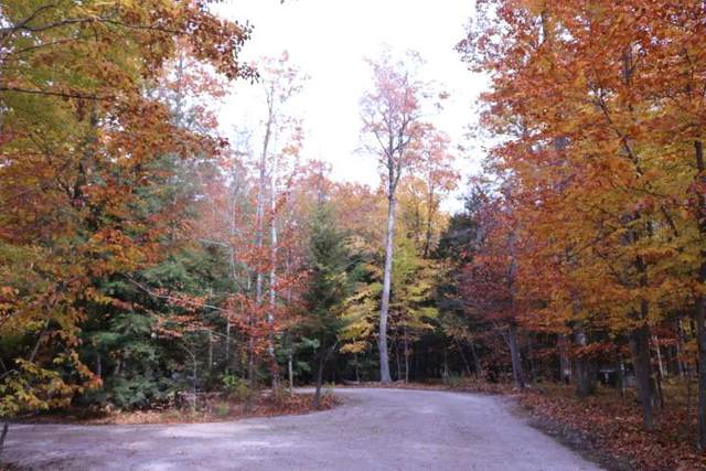 Bay Shore Woods Ln, Town of Egg Harbor, WI 54209 (#135950) :: Town & Country Real Estate