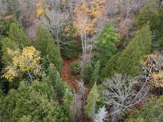County Rd Q, Baileys Harbor, WI 54202 (#135998) :: Town & Country Real Estate
