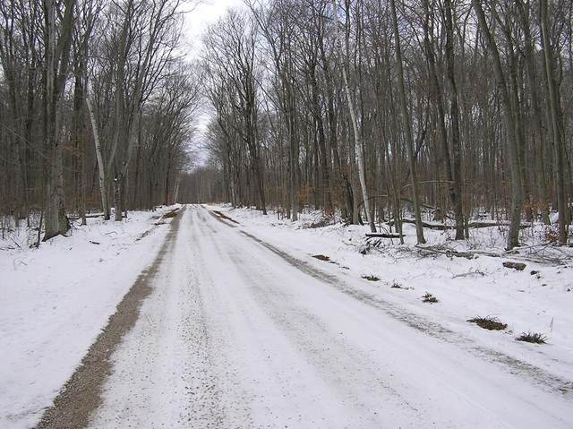 TBD Henning Rd, Washington Island, WI 54246 (#136209) :: Town & Country Real Estate