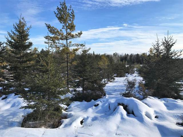 W Meadow Rd, Baileys Harbor, WI 54202 (#136359) :: Town & Country Real Estate