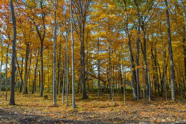 Cottage Bluff Ln, Fish Creek, WI 54212 (#136415) :: Town & Country Real Estate