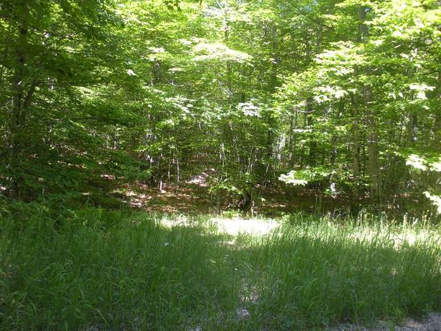 TBD Hagen Dr, Washington Island, WI 54246 (#136545) :: Town & Country Real Estate