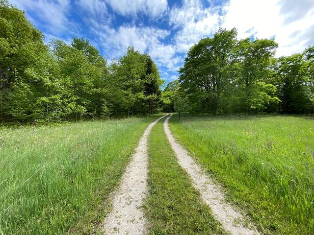 1718 Highview Rd, Ellison Bay, WI 54210 (#136921) :: Town & Country Real Estate