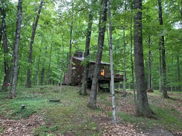 4439 Daisy Patch Rd, Town of Gibraltar, WI 54212 (#137173) :: Town & Country Real Estate