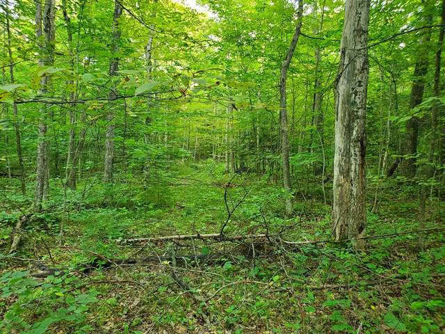 TBD Fitzgerald Rd, Ellison Bay, WI 54210 (#137334) :: Town & Country Real Estate