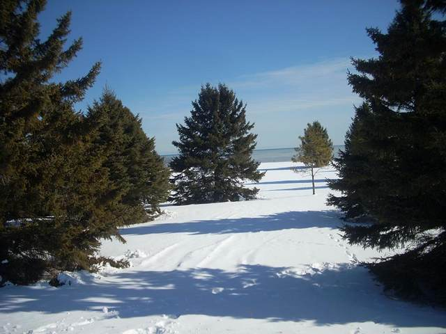 606 Lakeshore Dr, Kewaunee, WI 54216 (#134868) :: Town & Country Real Estate