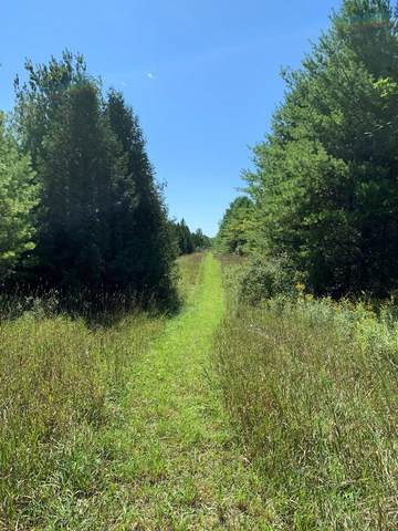 Lot 4 Plum Bottom Rd, Sturgeon Bay, WI 54235 (#135750) :: Town & Country Real Estate