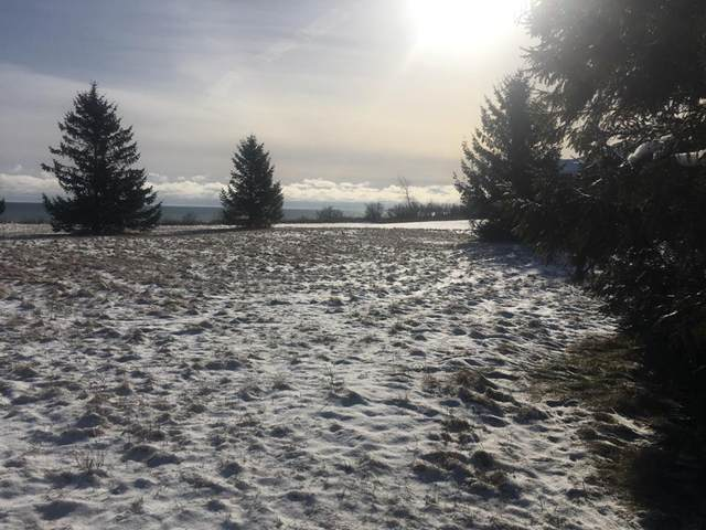 604 Lakeshore Dr, Kewaunee, WI 54216 (#131937) :: Town & Country Real Estate