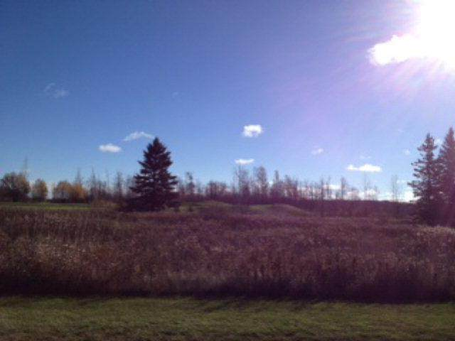 1600 Cobblestone Rd, Egg Harbor, WI 54209 (#133407) :: Town & Country Real Estate