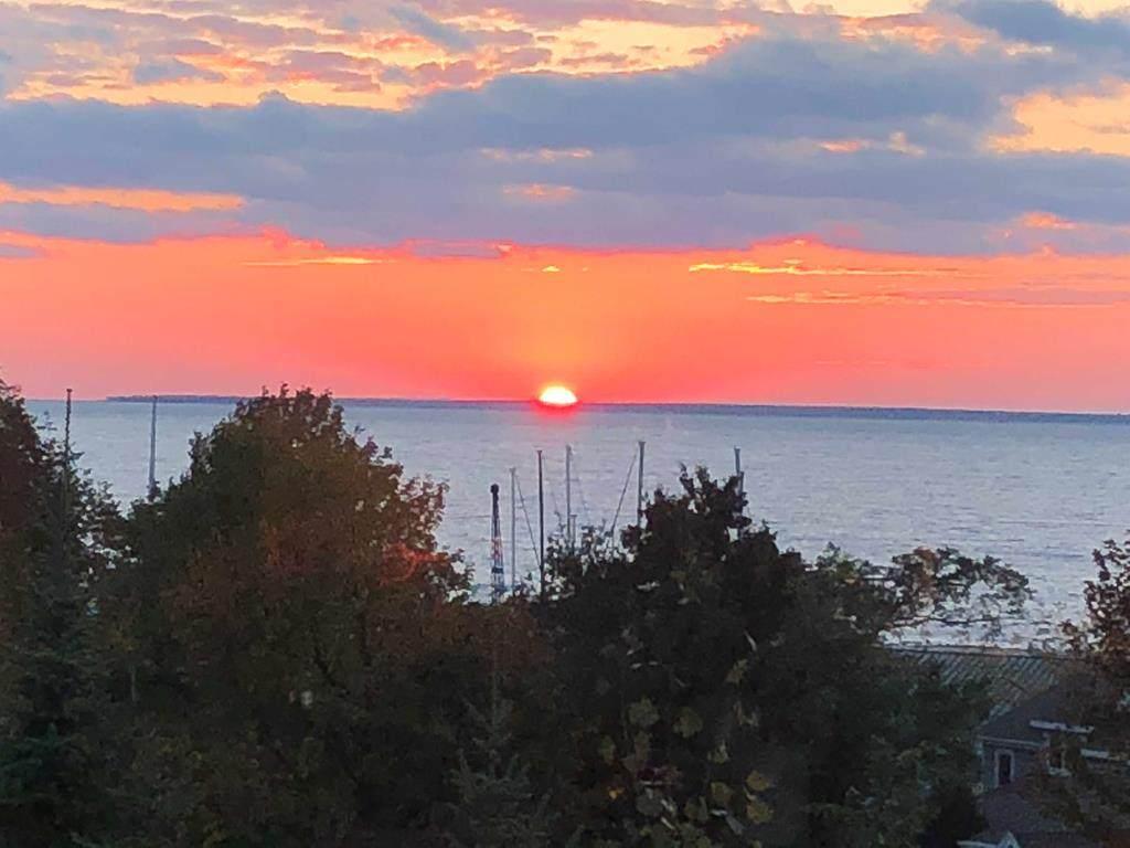 10965 Harbor Shores Ct - Photo 1