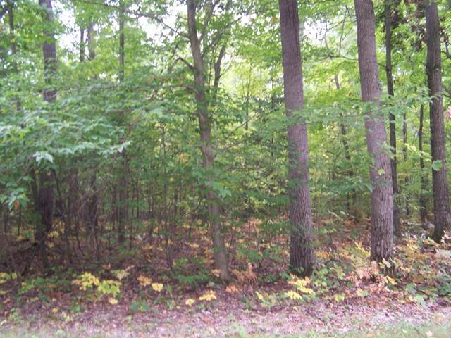 Lot 22 Governors Woods Tr, Egg Harbor, WI 54209 (#135984) :: Town & Country Real Estate