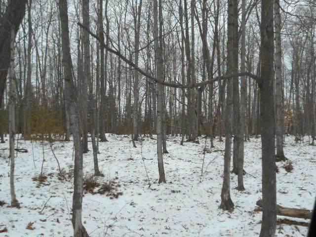 Harbor Heights Ct, Egg Harbor, WI 54209 (#136275) :: Town & Country Real Estate