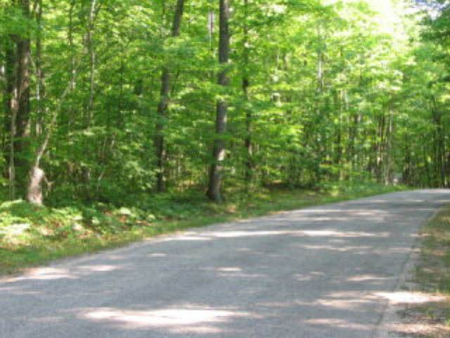 TBD Lot1 Gibraltar Bluff Rd, Fish Creek, WI 54212 (#136276) :: Town & Country Real Estate