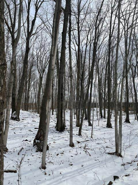 TBD Lot2 Gibraltar Bluff Rd, Fish Creek, WI 54212 (#136277) :: Town & Country Real Estate