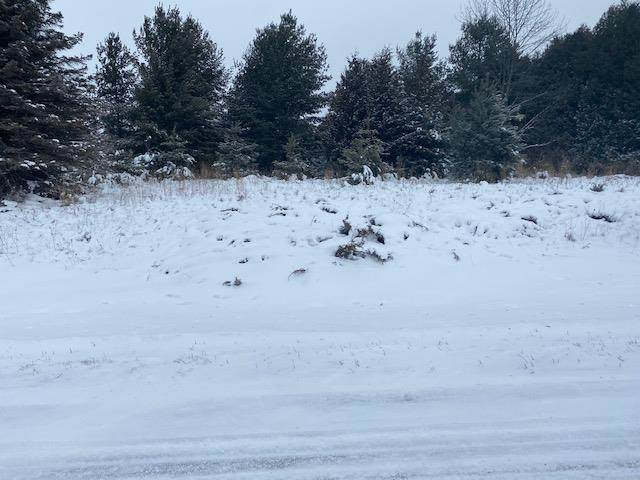 Country Ln, Sister Bay, WI 54234 (#136304) :: Town & Country Real Estate