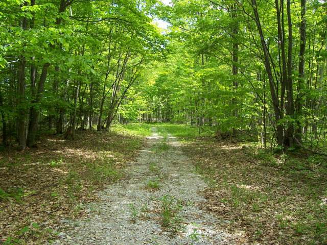 Spring Ln, Egg Harbor, WI 54209 (#136305) :: Town & Country Real Estate