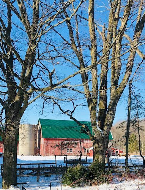 4885 Sunnyslope Rd, Town of Egg Harbor, WI 54209 (#136327) :: Town & Country Real Estate