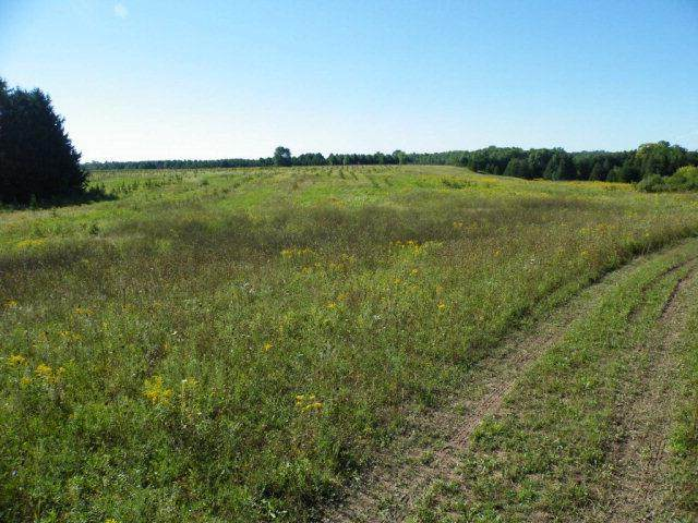 2nd Rd, Kewaunee, WI 54216 (#136712) :: Town & Country Real Estate