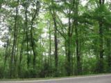 0 Mixon School Road - Photo 3