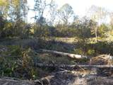20.8+-ac State Line Rd/Sealy Springs Rd - Photo 12