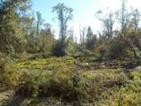 20.8+-ac State Line Rd/Sealy Springs Rd - Photo 3