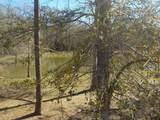 863 Cowarts Creek Rd - Photo 47