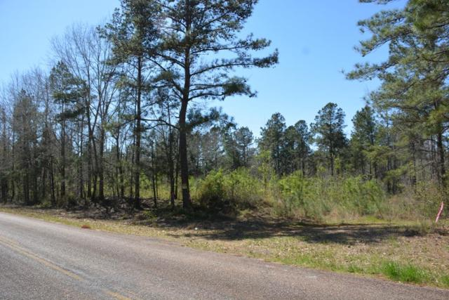 TBD Shelley Jackson Road, Clio, AL 36017 (MLS #168613) :: Team Linda Simmons Real Estate