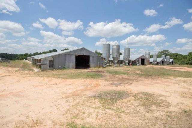 6.1 E Acres Highway 27, Ozark, AL 36360 (MLS #169389) :: Team Linda Simmons Real Estate