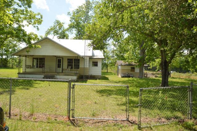 141 Case Rd, Slocomb, AL 36375 (MLS #169875) :: Team Linda Simmons Real Estate