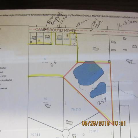 1236 Campground Road, Ozark, AL 36360 (MLS #170082) :: Team Linda Simmons Real Estate