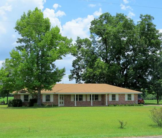 2382 N State Highway 103, Hartford, AL 36375 (MLS #170284) :: Team Linda Simmons Real Estate