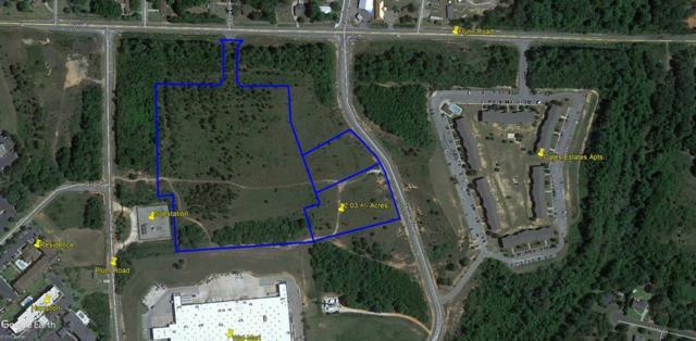 tbd Murphy Mill Road, Dothan, AL 36303 (MLS #170575) :: Team Linda Simmons Real Estate