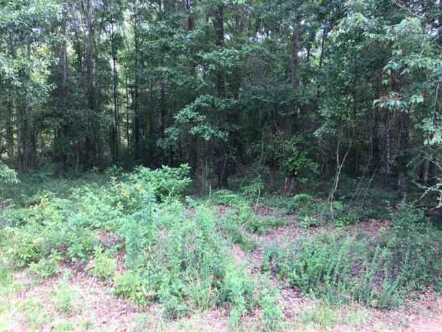 Lot 1 Olympia Drive, Dothan, AL 36301 (MLS #170947) :: Team Linda Simmons Real Estate