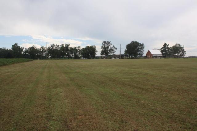 Midland City, AL 36350 :: Team Linda Simmons Real Estate