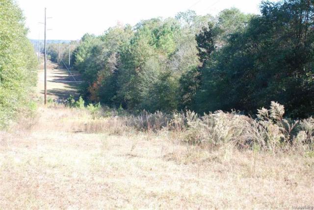 TBD Old Newton Road, Daleville, AL 36322 (MLS #171078) :: Team Linda Simmons Real Estate
