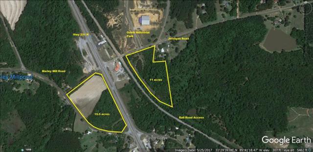 0 Hwy 231, Ozark, AL 36350 (MLS #171310) :: Team Linda Simmons Real Estate