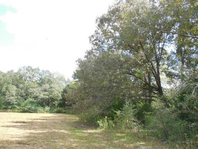7.8 Acre Hardy Rd, Rehobeth, AL 36301 (MLS #171316) :: Team Linda Simmons Real Estate