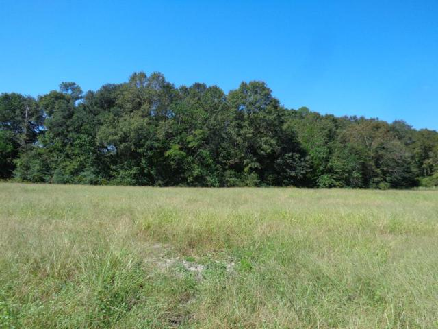 8+-ac Womack Rd, Cottonwood, AL 36320 (MLS #171343) :: Team Linda Simmons Real Estate