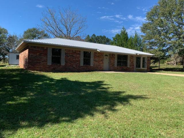 7966 County Road 65, Abbeville, AL 36310 (MLS #171432) :: Team Linda Simmons Real Estate