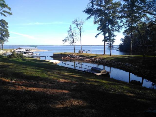 Lot 85 Lakeview Dr, Abbeville, AL 36310 (MLS #171591) :: Team Linda Simmons Real Estate