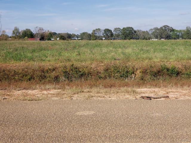 4 ACRES Hartzog Road, Wicksburg, AL 36375 (MLS #171600) :: Team Linda Simmons Real Estate