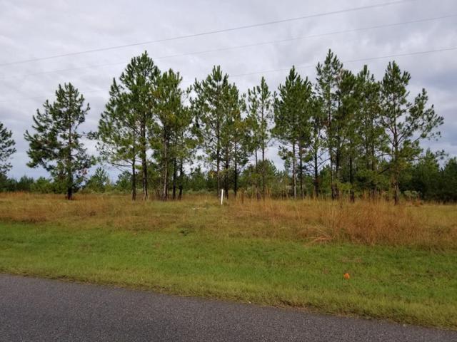 Lot 1 Block B Jester St, Cowarts, AL 36321 (MLS #171650) :: Team Linda Simmons Real Estate
