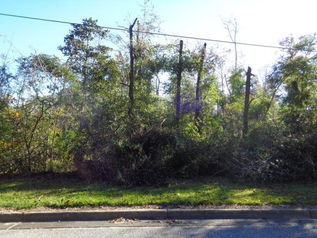 18+-ac Old Mill Run, Dothan, AL 36303 (MLS #171762) :: Team Linda Simmons Real Estate