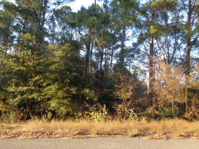 3.69+-ac Cty Rd 6, Headland, AL 36345 (MLS #171805) :: Team Linda Simmons Real Estate