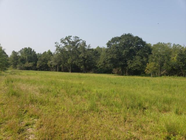 22.4 Acres S State Hwy 103, Slocomb, AL 36375 (MLS #171995) :: Team Linda Simmons Real Estate